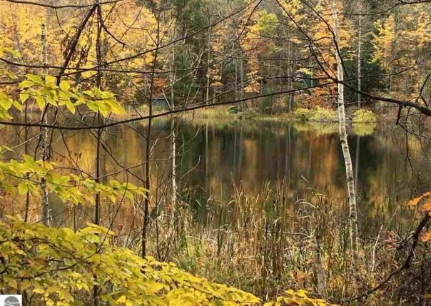 00 Lakewood Circle Drive, Lake Ann, MI, 49650