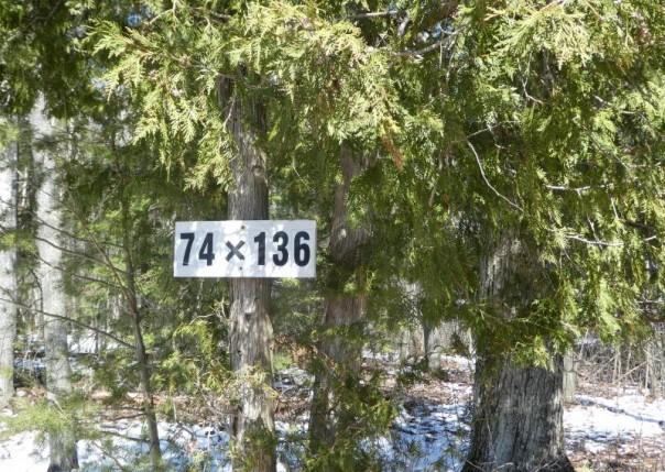 2951 Noralin Lot #3, Alpena, MI, 49707