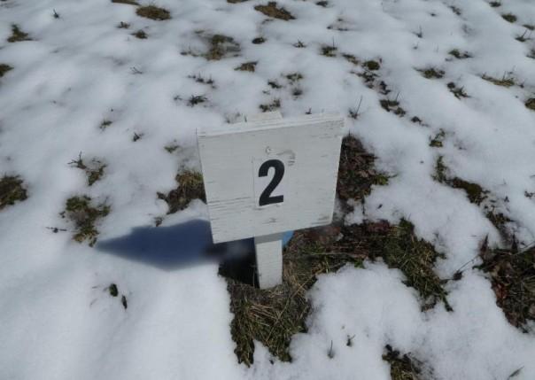 2889 Noralin Lot #7, Alpena, MI, 49707