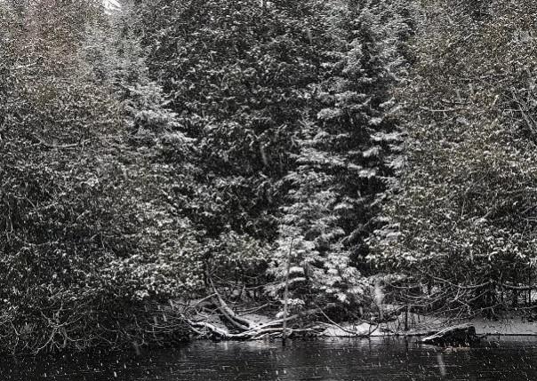 9140 Marsh Creek, Grayling, MI, 49738