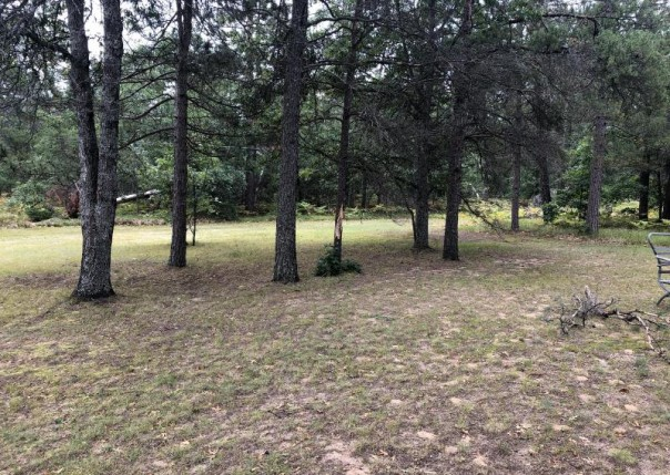 2455 Peaceful Vista, Grayling, MI, 49738