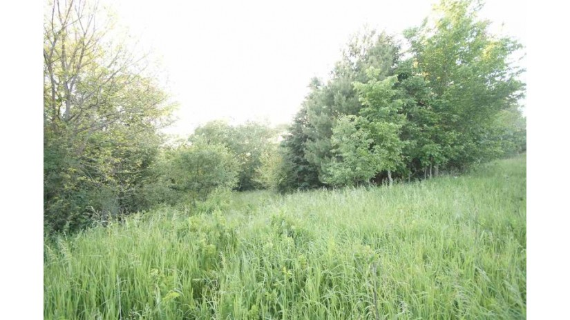 4.53 Ac County Road Qq Mineral Point, WI 53565 by Potterton-Rule Inc $50,000