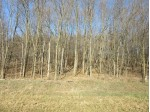 40 Ac Elm Rd, Sauk City, WI by Gavin Brothers Auctioneers Llc $252,000