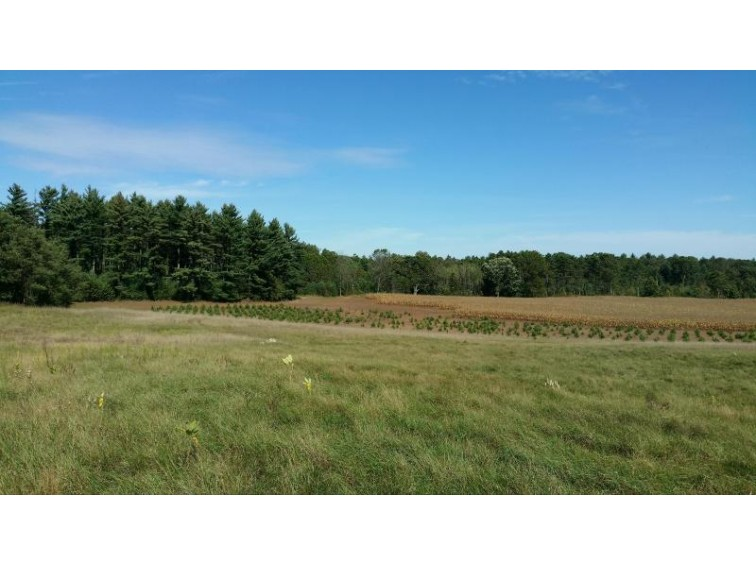 Lt1 State Road 82 Oxford, WI 53952 by New Era Realty, Inc. $95,000
