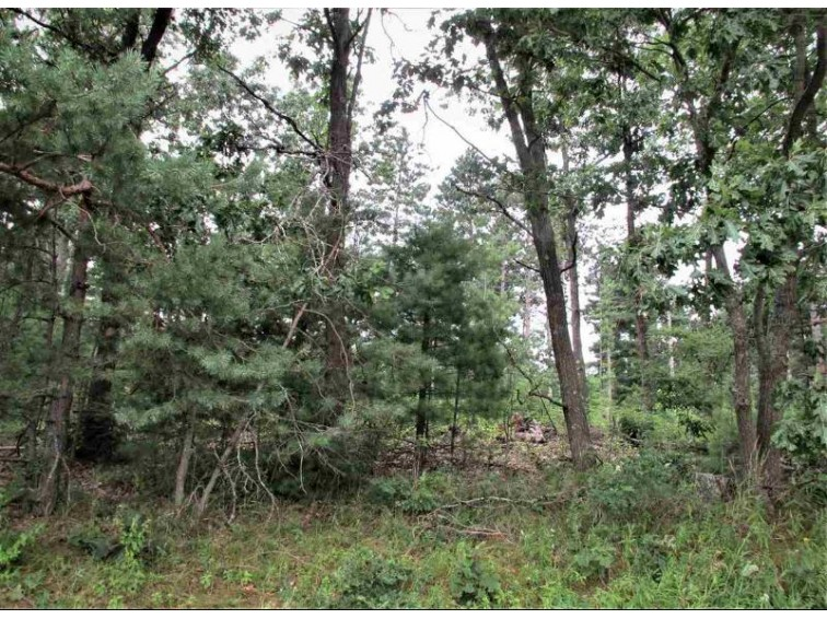 Hwy Tt Wild Rose, WI 54984 by First Choice Realty, Inc. $163,800