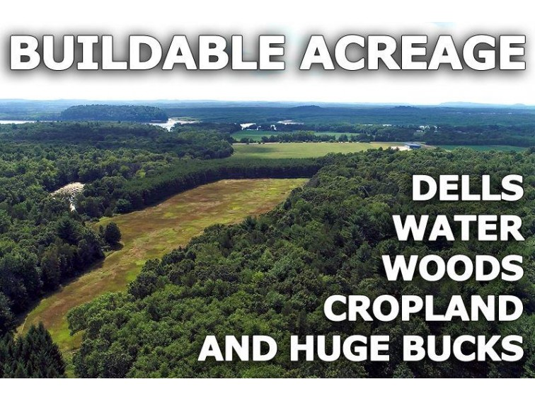 95 Ac Gem Dr Wisconsin Dells, WI 53965 by Landman Realty Llc $394,900