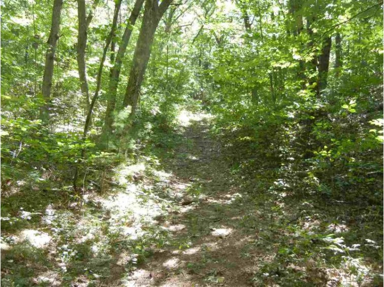 Chelsea Drive, Wautoma, WI by First Weber Real Estate $15,800