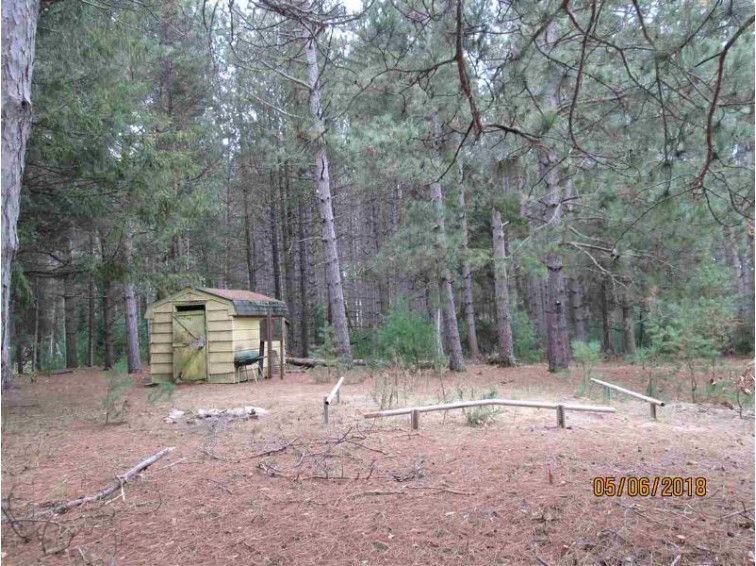 W9188 Olaf Court Wild Rose, WI 54984 by First Weber Real Estate $16,900