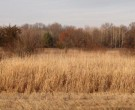 16.65 Ac County Road P