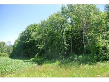 N St Peters Rd, West Kewaunee, WI 54216