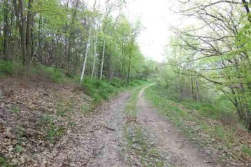 S11171 Dane Hill Rd, Bear Creek, WI 53556