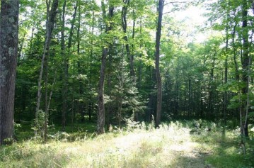 Lot Cricket Lane, Winter, WI 54896