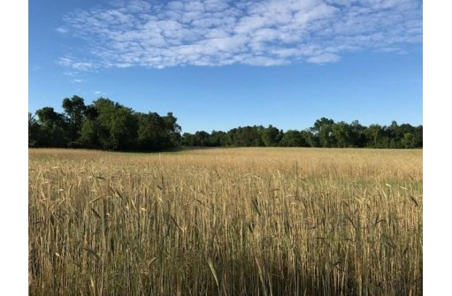 N5050 County Road Hh, Mauston, WI 53948