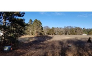 5.28 Ac Gale Ave Wisconsin Dells, WI 53965