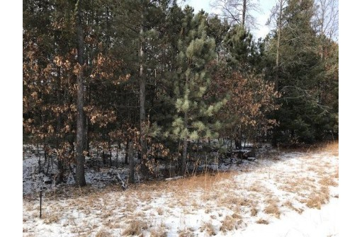 4.92 Ac 8th Ave, Friendship, WI 53934