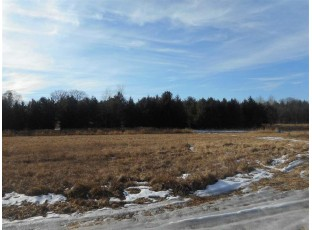 17.75 Ac Dover Ct Westfield, WI 53964
