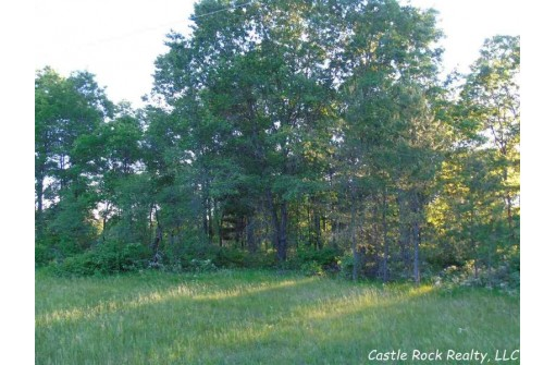 L5 17th Ave, Necedah, WI 54646