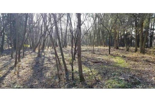 9.79 Ac County Road Qq, Mineral Point, WI 53565