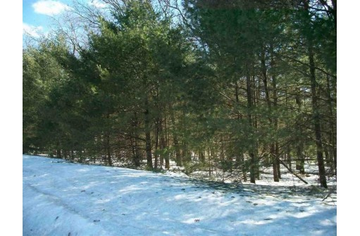 1.60 Ac County Road G, New Lisbon, WI 53950