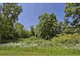 0.23 Ac Thompson Dr Oregon, WI 53575