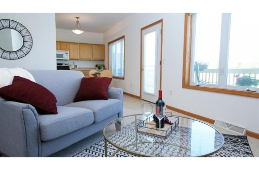 4102 Dolphin Dr, Madison, WI 53719