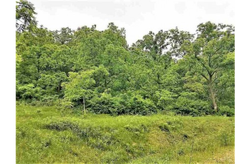 8.18 AC Mounds Park Rd, Barneveld, WI 53507