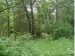 L60 White Lake Ct, Montello, WI by First Weber Real Estate $25,000
