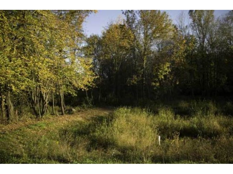 L75 Autumn Blaze Tr DeForest, WI 53532 by First Weber Real Estate $94,900