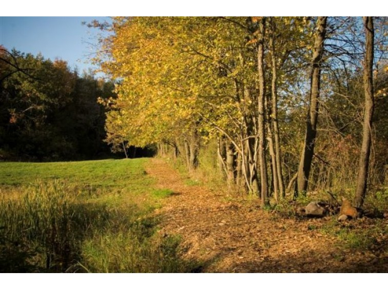 L184 Bluestem Tr DeForest, WI 53532 by First Weber Real Estate $94,900