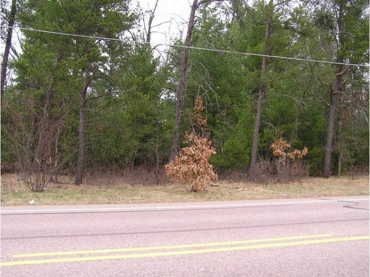 Lots 42-44 Griffith Avenue, Wisconsin Rapids, WI by First Weber Real Estate $7,900