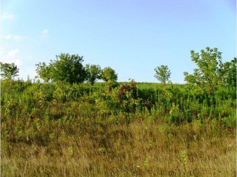Lot 2 Honeycut Ave, Tomah, WI by Re/Max Hometown Real Estate $17,000