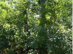 L208 Timber Tr, New Lisbon, WI by Castle Rock Realty Llc $6,900