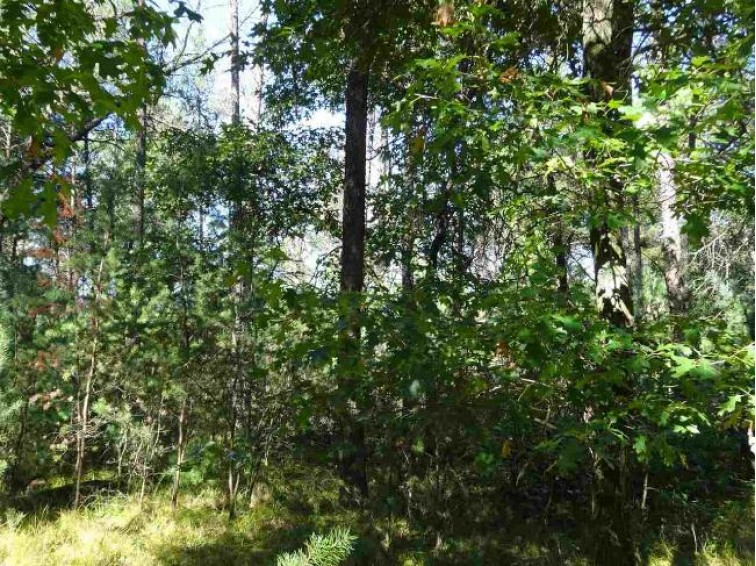 Lot 175 Timber Tr, New Lisbon, WI by Castle Rock Realty Llc $7,900