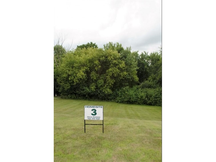 706 Kensington Dr, Ripon, WI by Special Properties Of Green Lake Llc $26,900
