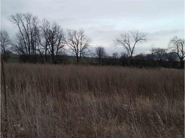 L2 Danny Ln, Fond Du Lac, WI by Madison Realty Group $44,900