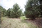 80.40 Ac Dover Ave, Westfield, WI by Landman Realty Llc $235,000