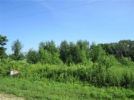 1.84 Ac River Forest Dr