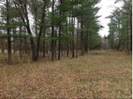 80 Acres County Road O