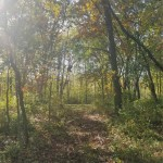 LOT 1 CSM 5495 Cowgill Rd Rio, WI 53960 by First Weber Real Estate $32,500