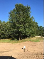 Lot 14 Brooke Lane, Stevens Point, WI by Kpr Brokers, Llc $47,900