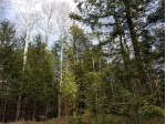 On Bo Di Lac Dr, Minocqua, WI by Lakeplace.com - Vacationland Properties $29,900