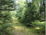 On Birch Lake Rd Lot 1, Watersmeet, MI by Century 21 Burkett - Lol $195,000