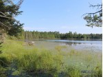 On Birch Lake Rd Lot 8, Watersmeet, MI by Century 21 Burkett - Lol $150,000