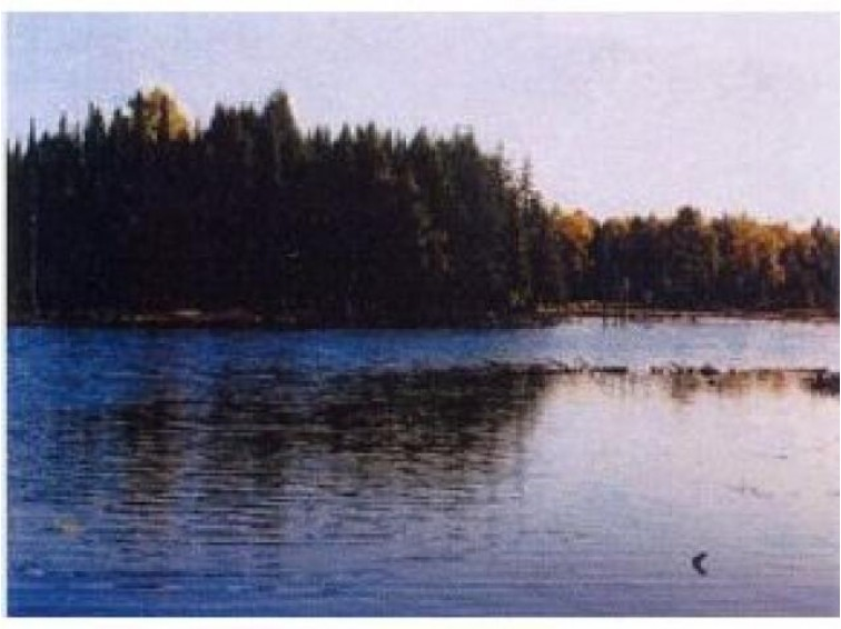 On Channel Rd, Watersmeet, MI by Eliason Realty Of Land O Lakes $149,900