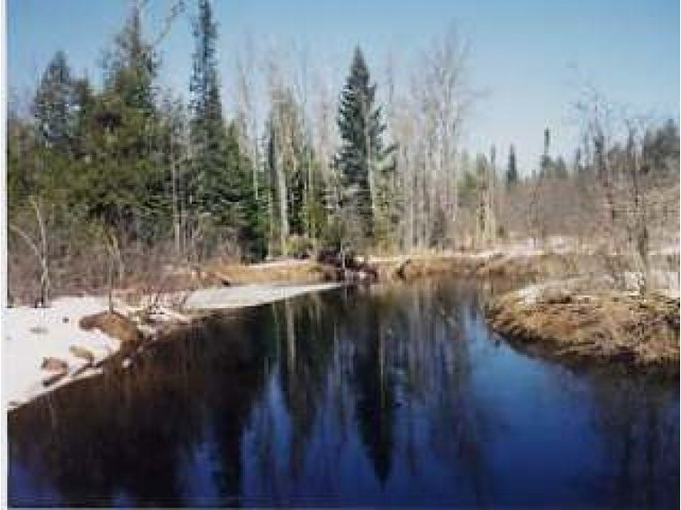 On Forest Rd 180, Wakefield, MI by Eliason Realty Of Land O Lakes $59,900
