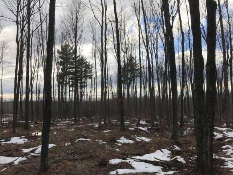 605 Ac. Price County Rd, Minocqua, WI by Lakeland Realty $549,000