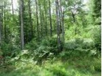 Lot 18 Pfeifer Rd, Tomahawk, WI by Lakeplace.com - Vacationland Properties $15,500