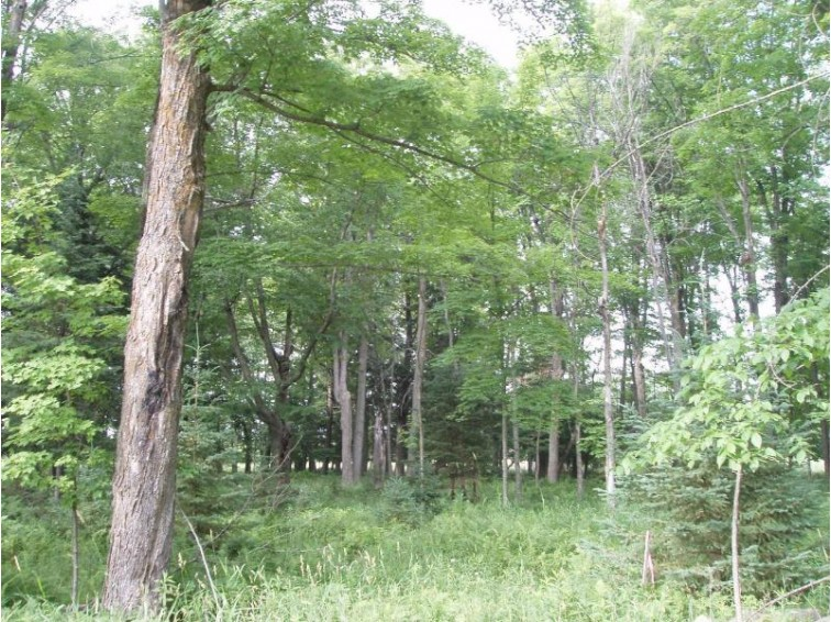 On Heritage Ln, Park Falls, WI by Birchland Realty, Inc - Park Falls $15,900