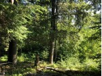 On Palmer Lake Rd, Land O Lakes, WI by Lakeplace.com - Vacationland Properties $99,000