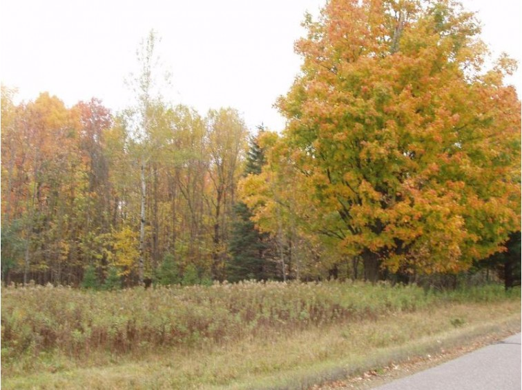 Lot 4 Margaret Ln, Lake, WI by Birchland Realty, Inc - Park Falls $14,900